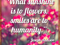 What Sunshine is to Flowers