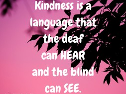 Kindness is a Language...